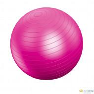 Vivamax gimnasztikai labda 55 cm /GYVGL55/